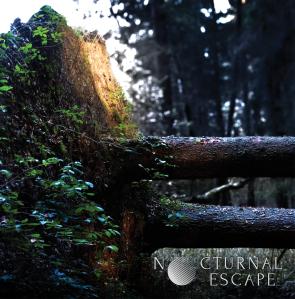 Nocturnal Escape - Nocturnal Escape - cover